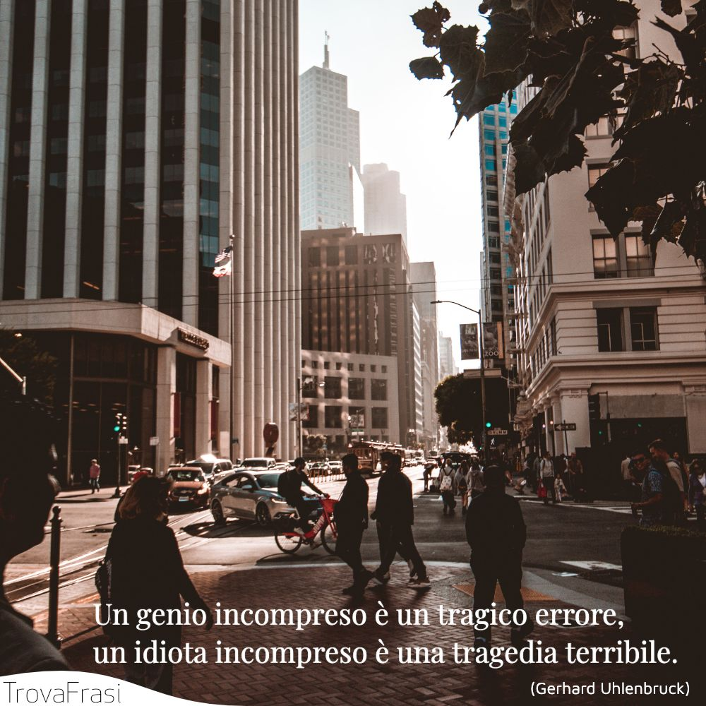Un genio incompreso è un tragico errore, un idiota incompreso è una tragedia terribile.