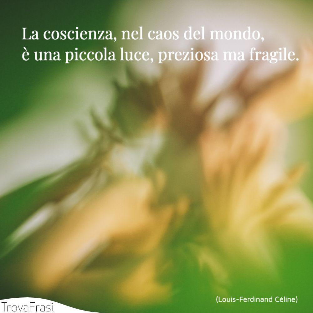 La coscienza, nel caos del mondo, è una piccola luce, preziosa ma fragile.