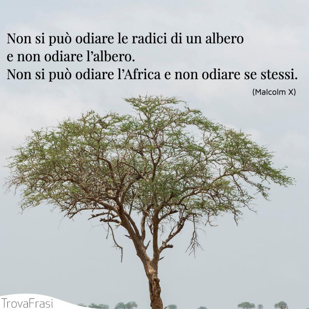Non si può odiare le radici di un albero e non odiare l'albero. Non si può odiare l'Africa e non odiare se stessi.