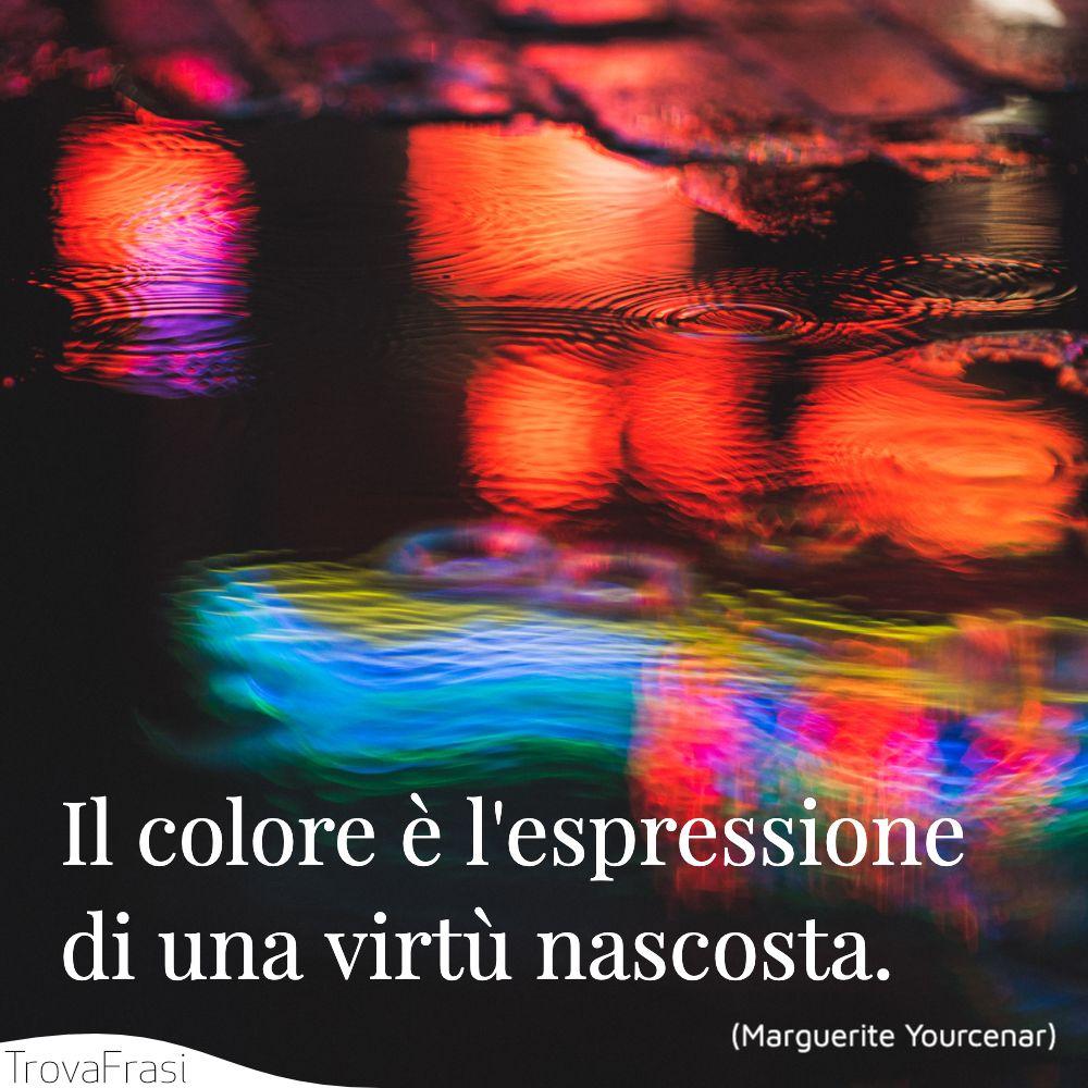 Il colore è l'espressione di una virtù nascosta.