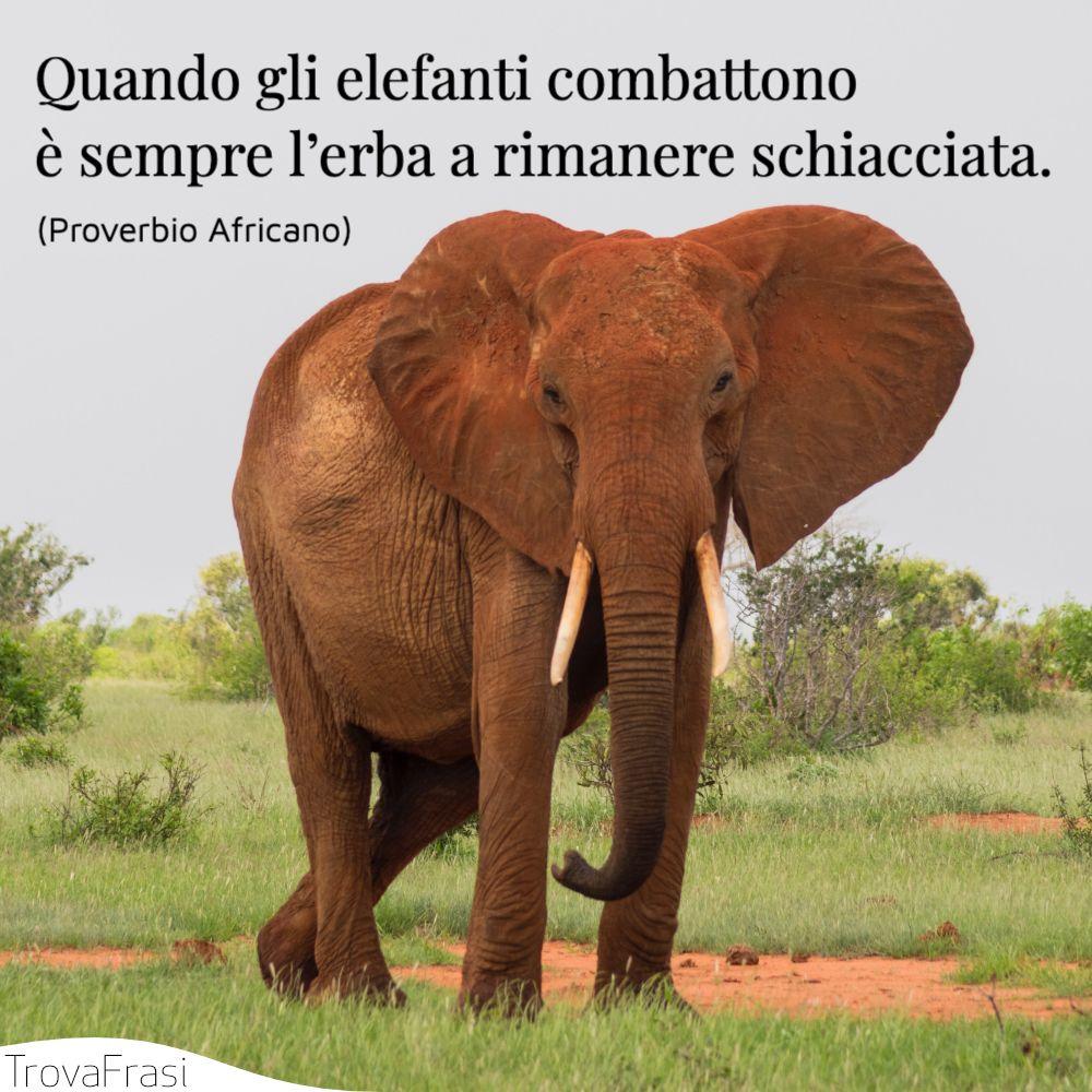 Quando gli elefanti combattono è sempre l'erba a rimanere schiacciata.