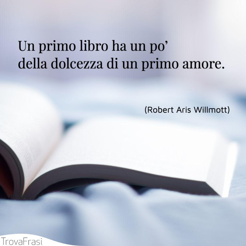 Un primo libro ha un po' della dolcezza di un primo amore.
