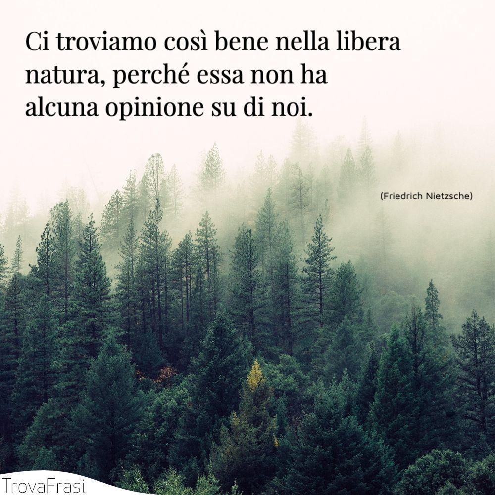 Ci troviamo così bene nella libera natura, perché essa non ha alcuna opinione su di noi.