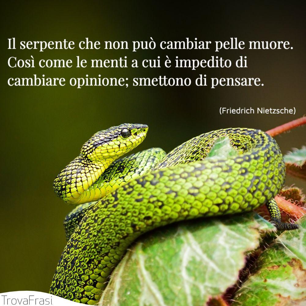 Il serpente che non può cambiar pelle muore. Così come le menti a cui è impedito di cambiare opinione; smettono di pensare.