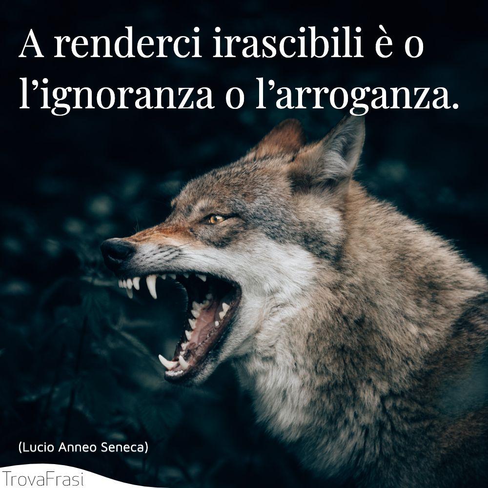 A renderci irascibili è o l'ignoranza o l'arroganza.