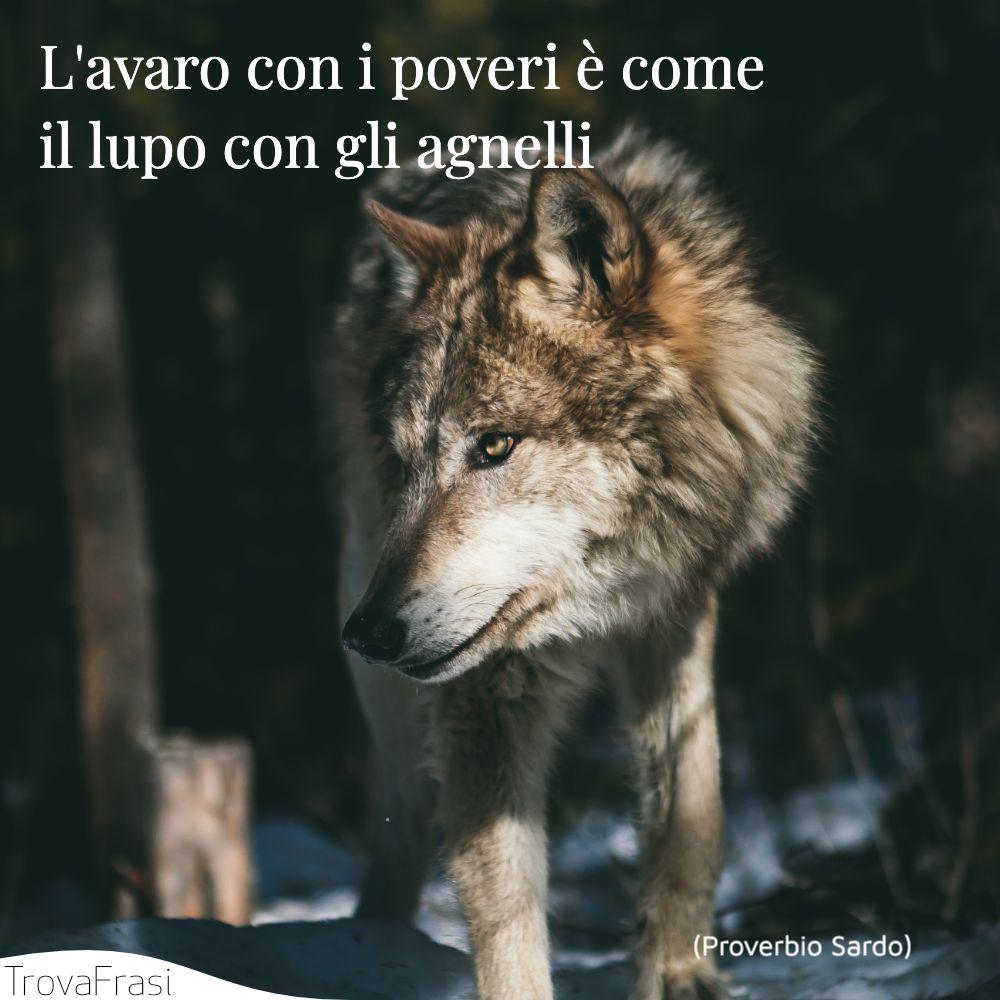 L'avaro con i poveri è come il lupo con gli agnelli