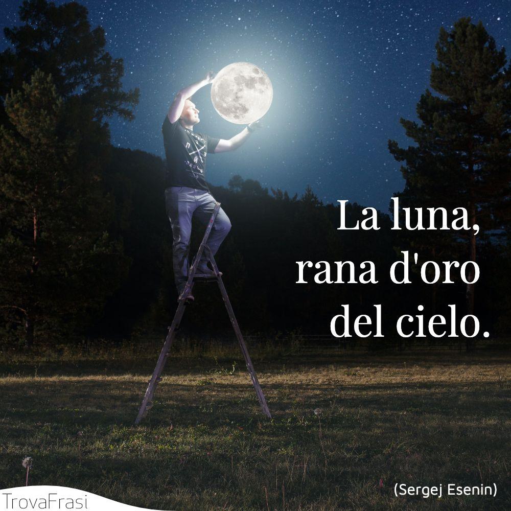 La luna, rana d'oro del cielo.