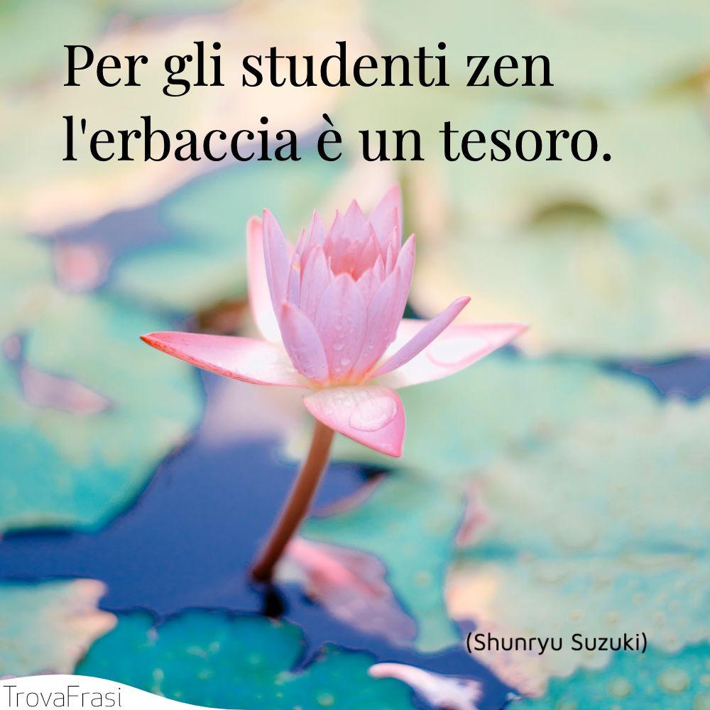 Per gli studenti zen l'erbaccia è un tesoro.