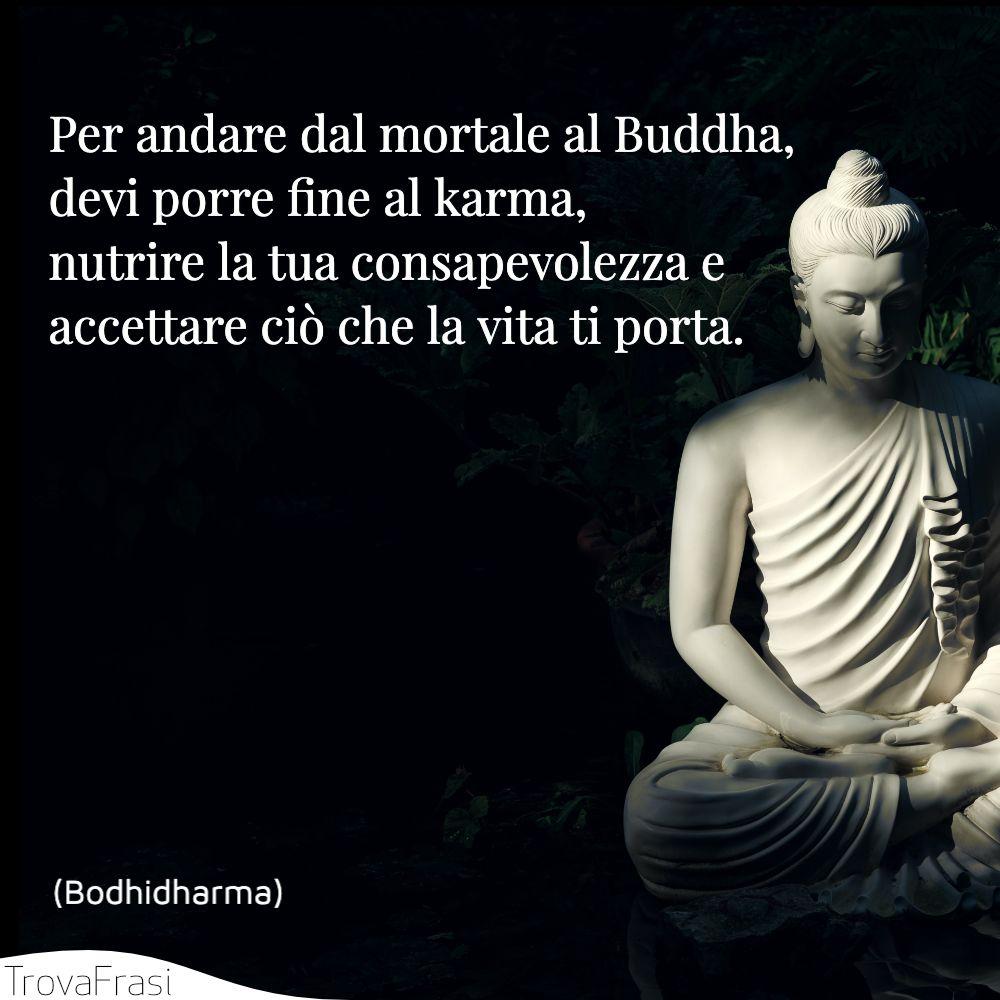 Per andare dal mortale al Buddha, devi porre fine al karma, nutrire la tua consapevolezza e accettare ciò che la vita ti porta.
