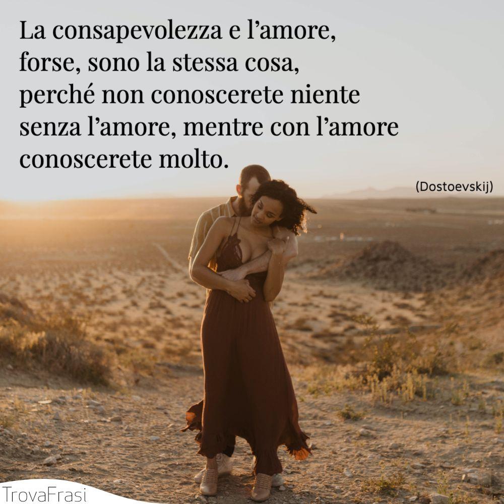 La consapevolezza e l'amore, forse, sono la stessa cosa, perché non conoscerete niente senza l'amore, mentre con l'amore conoscerete molto.