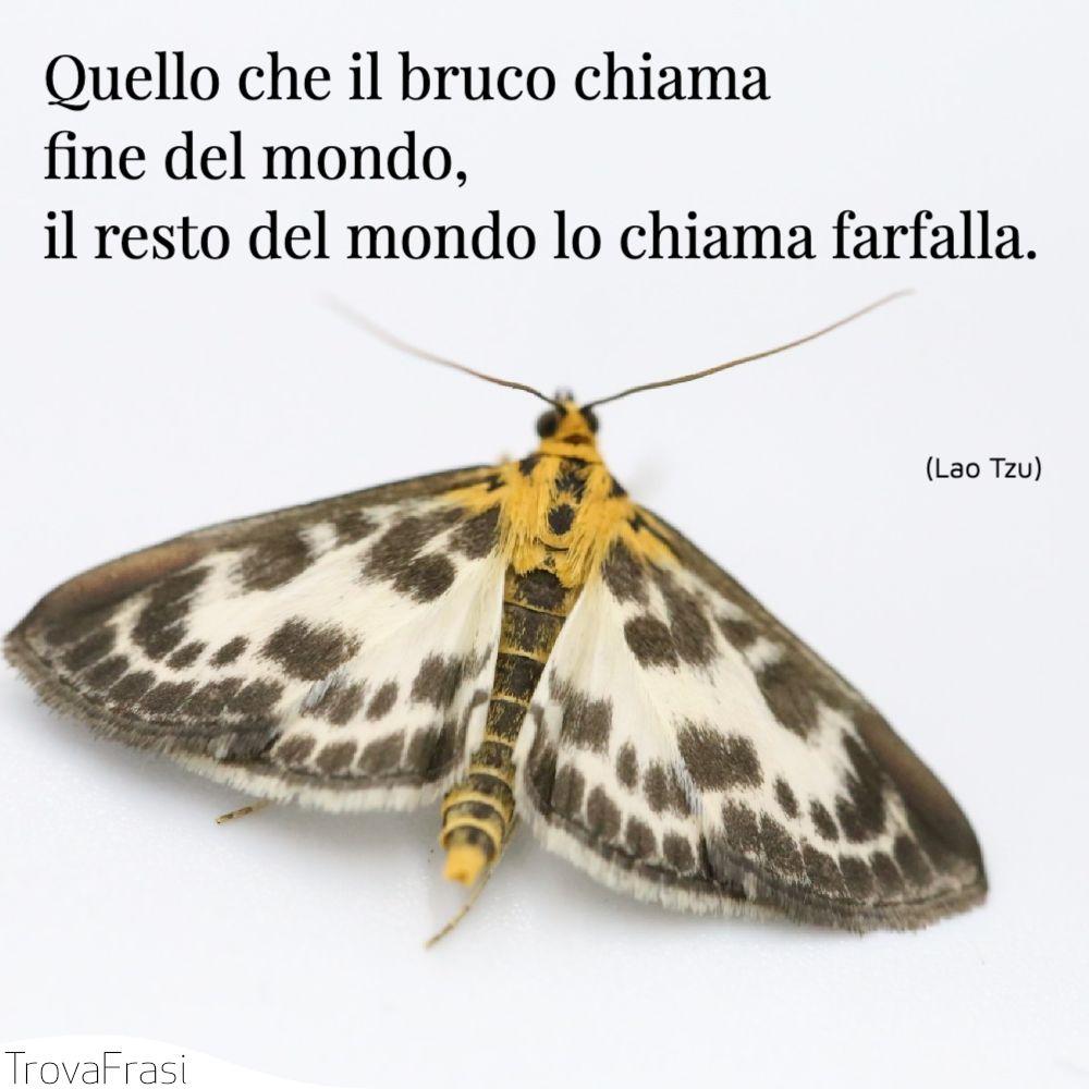Quello che il bruco chiama fine del mondo, il resto del mondo lo chiama farfalla.