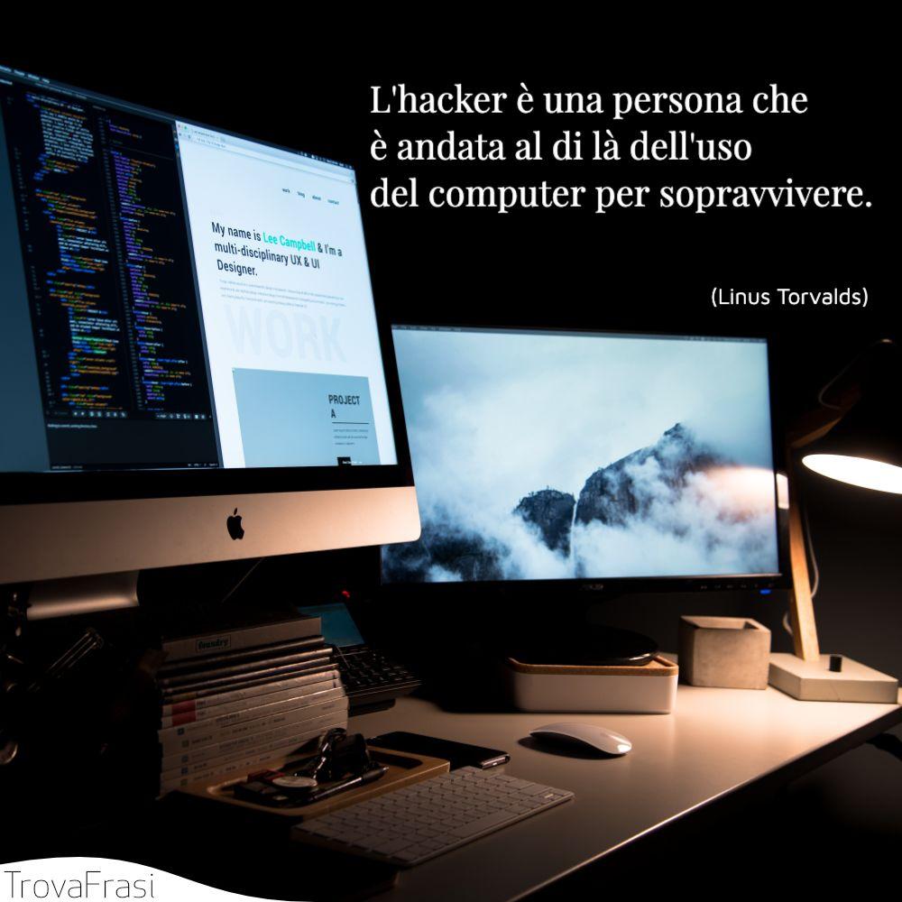 L'hacker è una persona che è andata al di là dell'uso del computer per sopravvivere.