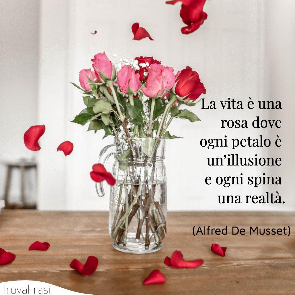 La vita è una rosa dove ogni petalo è un'illusione e ogni spina una realtà.