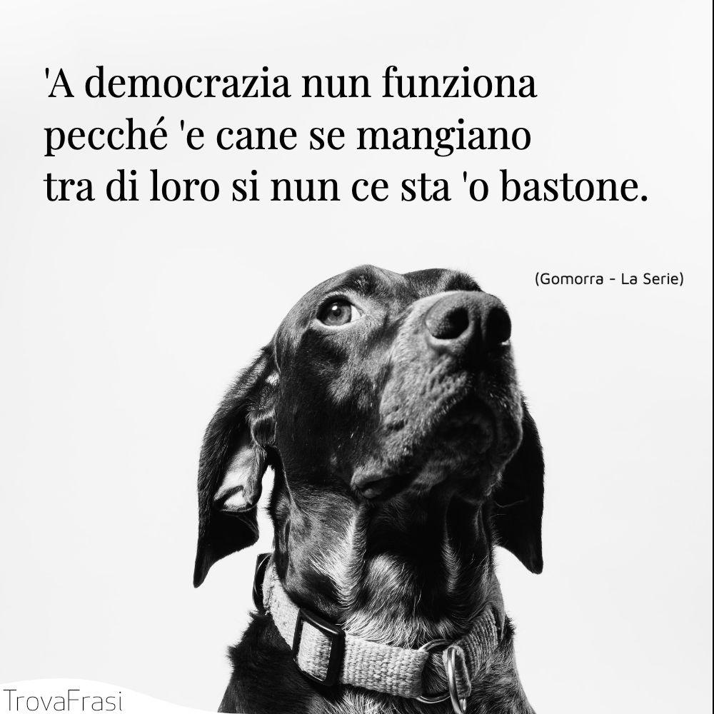 'A democrazia nun funziona pecché 'e cane se mangiano tra di loro si nun ce sta 'o bastone.