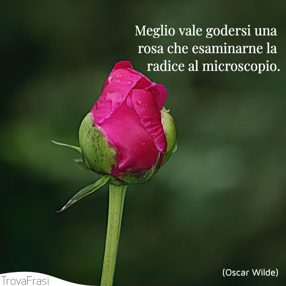 Meglio vale godersi una rosa che esaminarne la radice al microscopio.