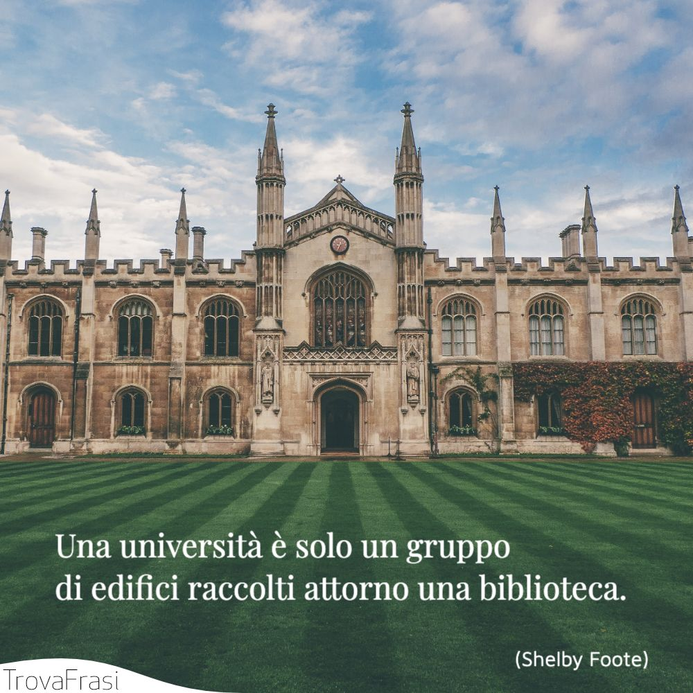 Una università è solo un gruppo di edifici raccolti attorno una biblioteca.