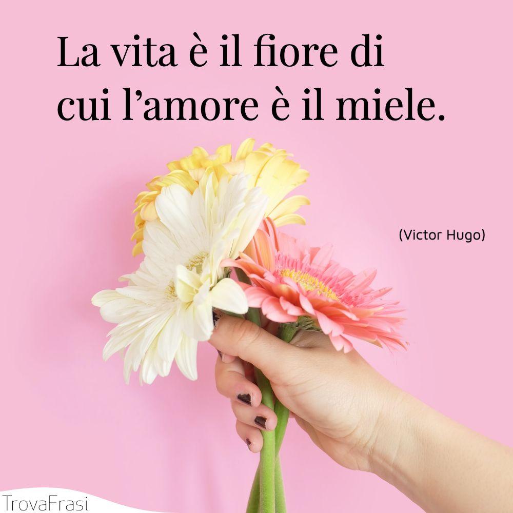 La vita è il fiore di cui l'amore è il miele.