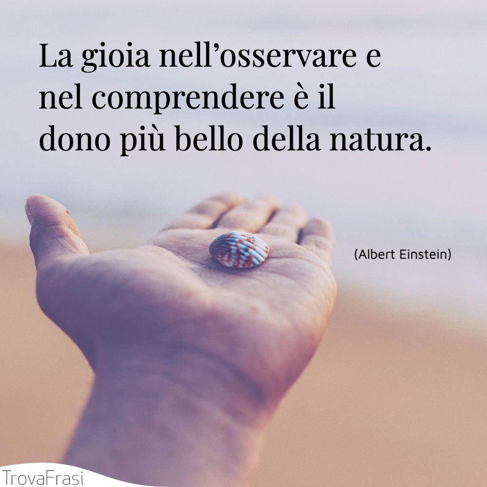 La gioia nell'osservare e nel comprendere è il dono più bello della natura.