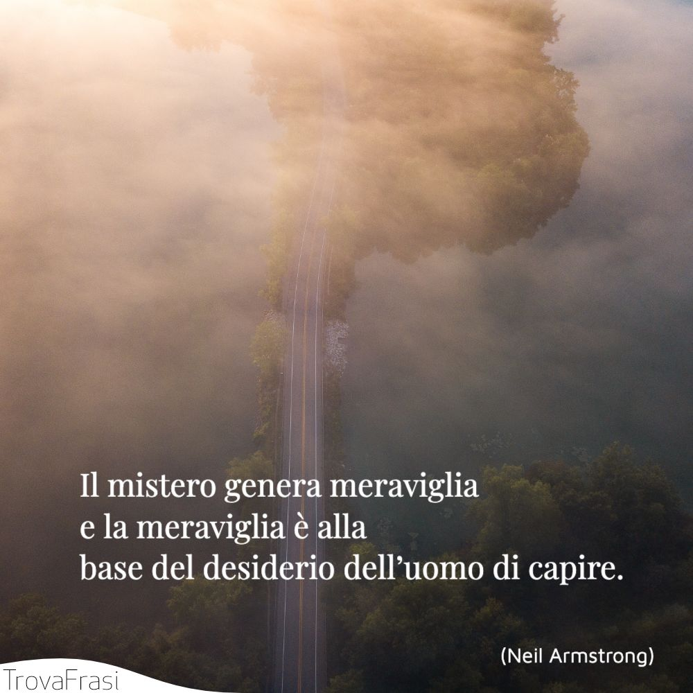 Il mistero genera meraviglia e la meraviglia è alla base del desiderio dell'uomo di capire.