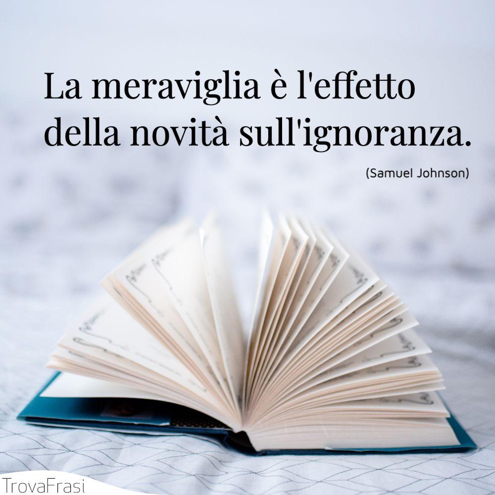 La meraviglia è l'effetto della novità sull'ignoranza.