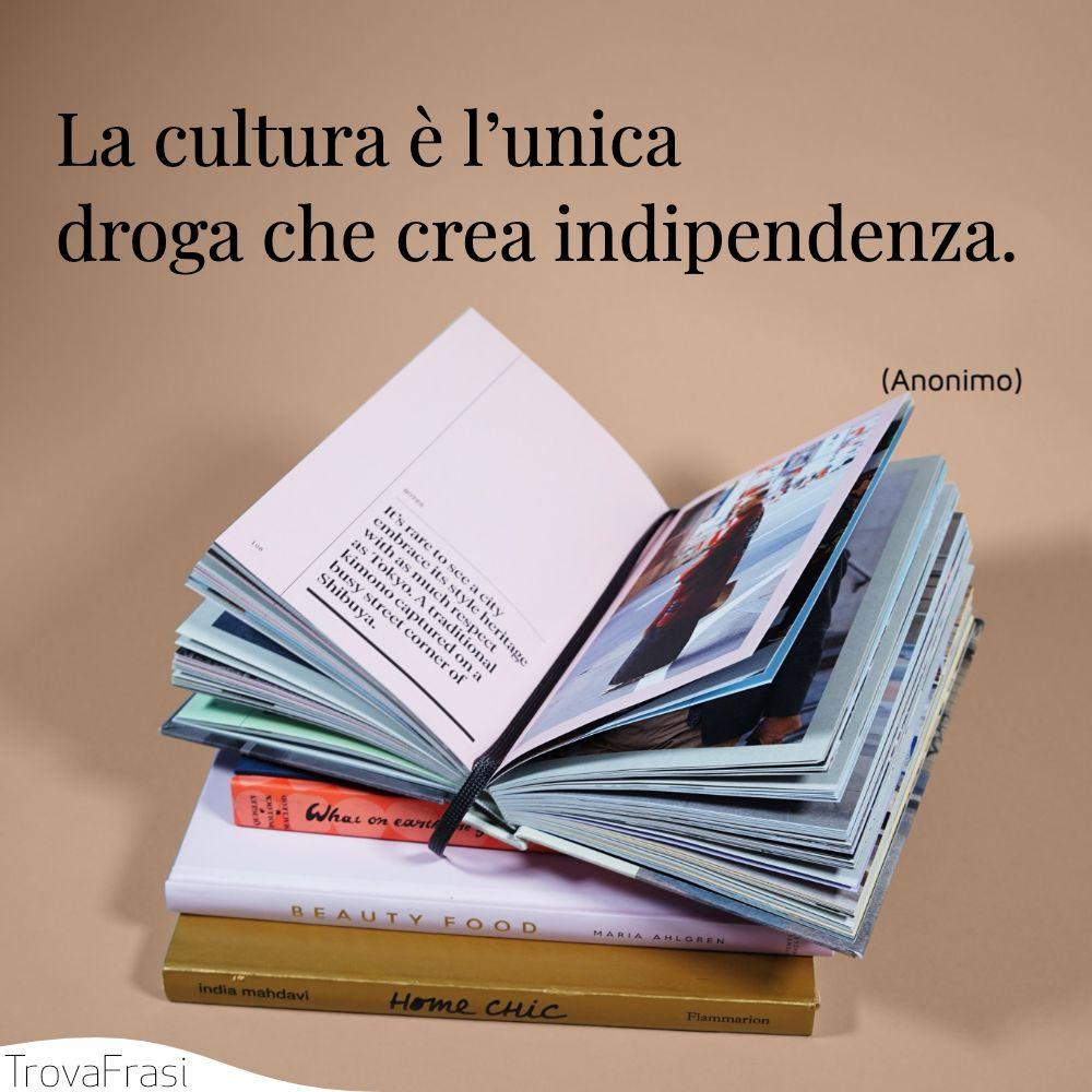 La cultura è l'unica droga che crea indipendenza.