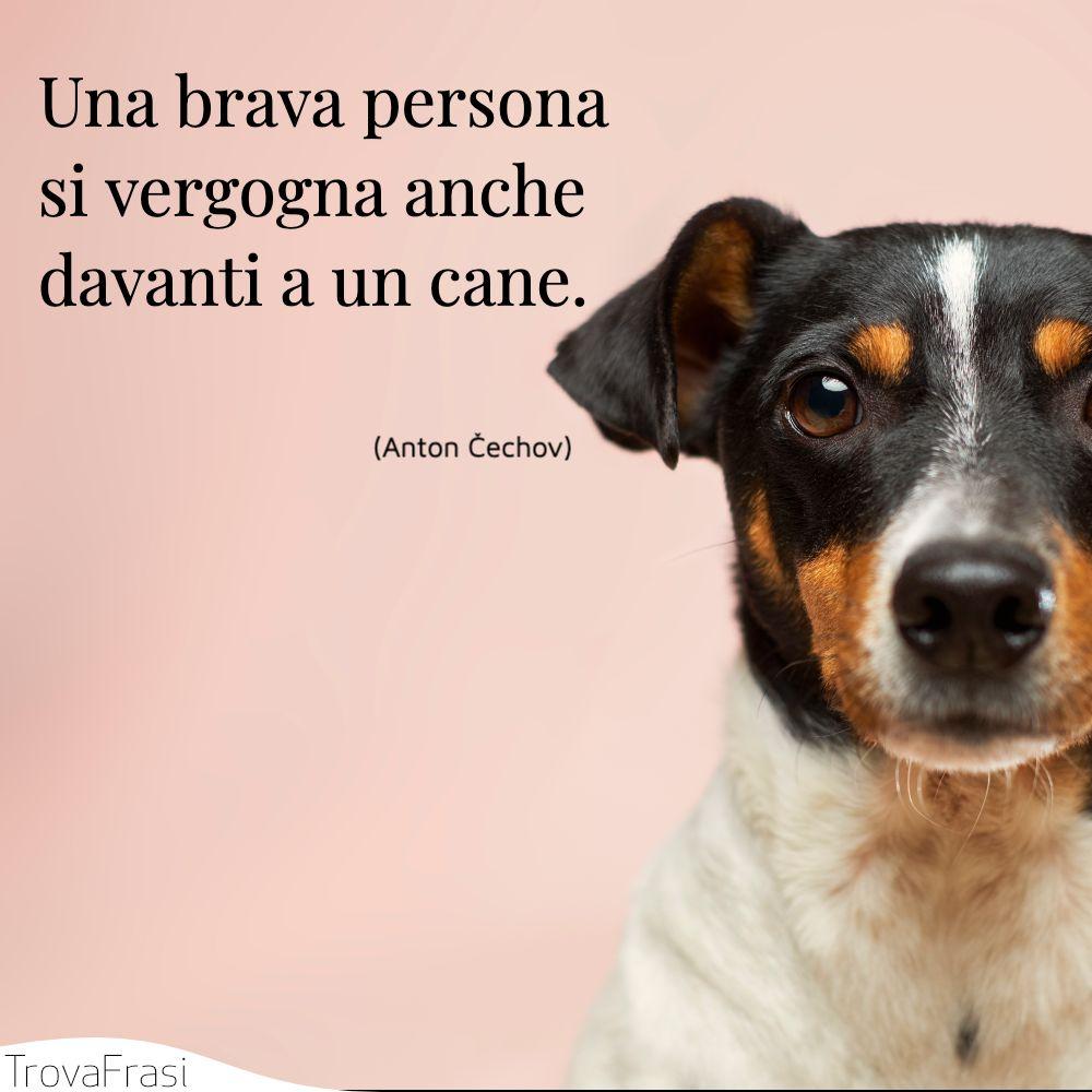 Una brava persona si vergogna anche davanti a un cane.