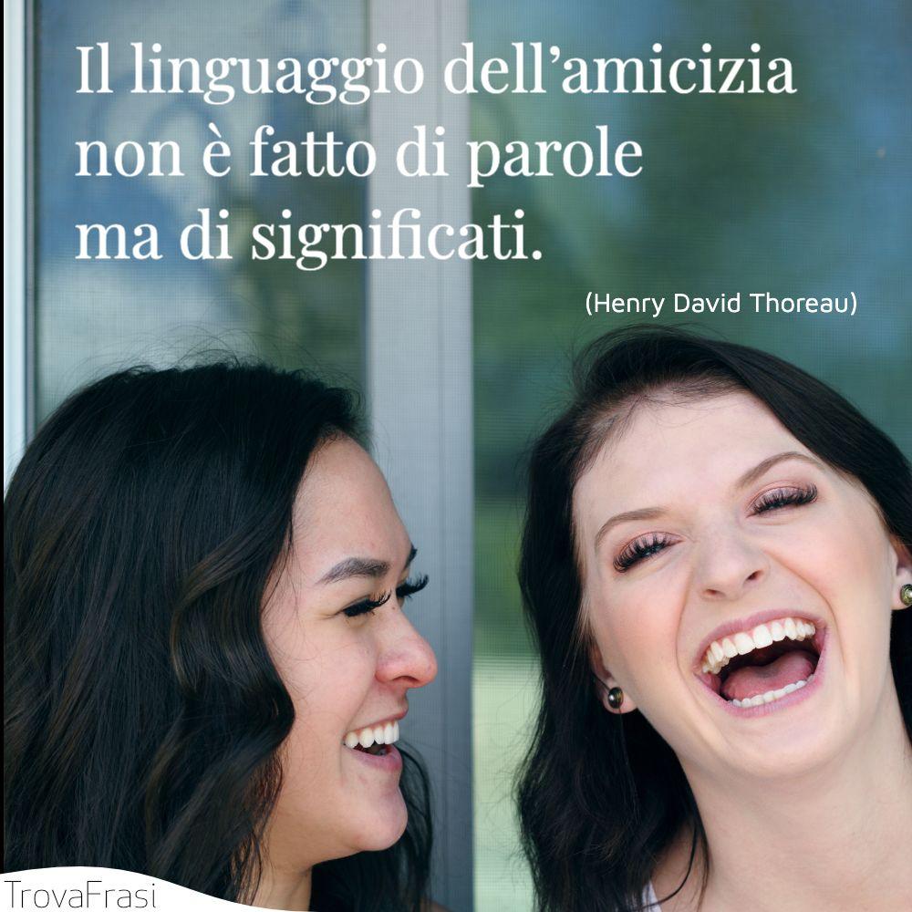 Il linguaggio dell'amicizia non è fatto di parole ma di significati.
