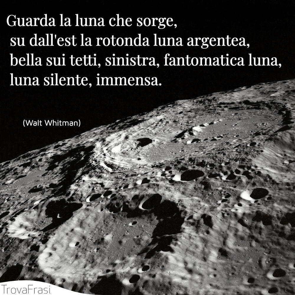 Guarda la luna che sorge,  su dall'est la rotonda luna argentea,  bella sui tetti, sinistra, fantomatica luna,  luna silente, immensa.