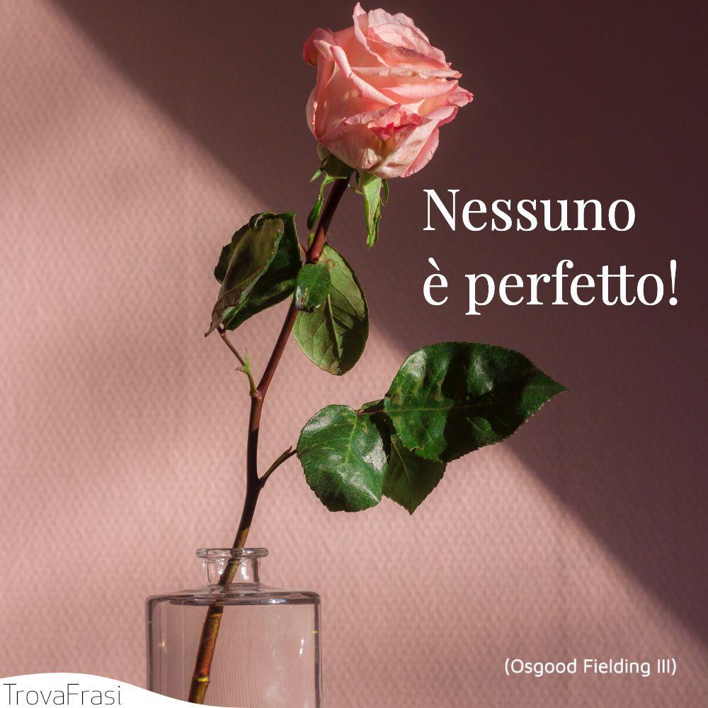 Nessuno è perfetto!