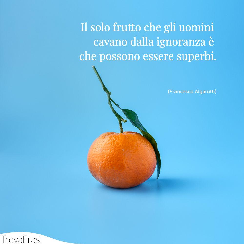 Il solo frutto che gli uomini cavano dalla ignoranza è che possono essere superbi.