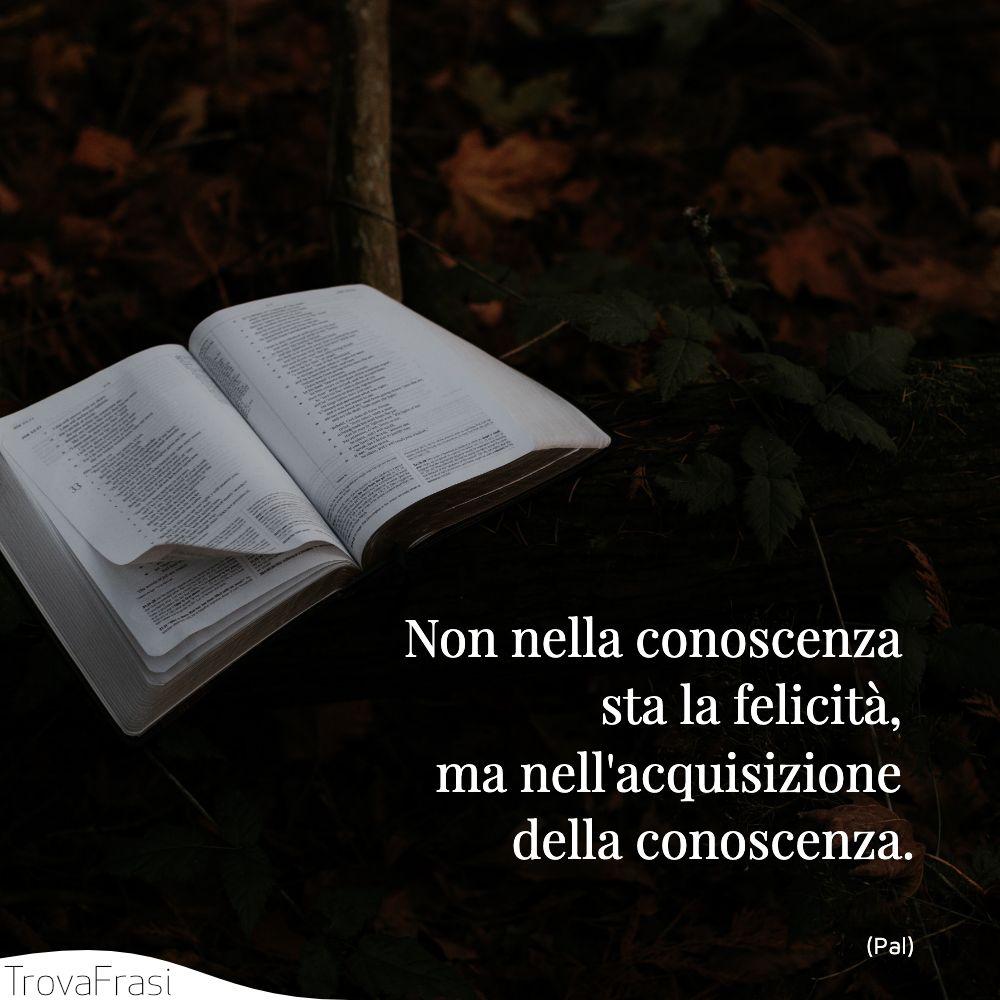 Non nella conoscenza sta la felicità, ma nell'acquisizione della conoscenza.