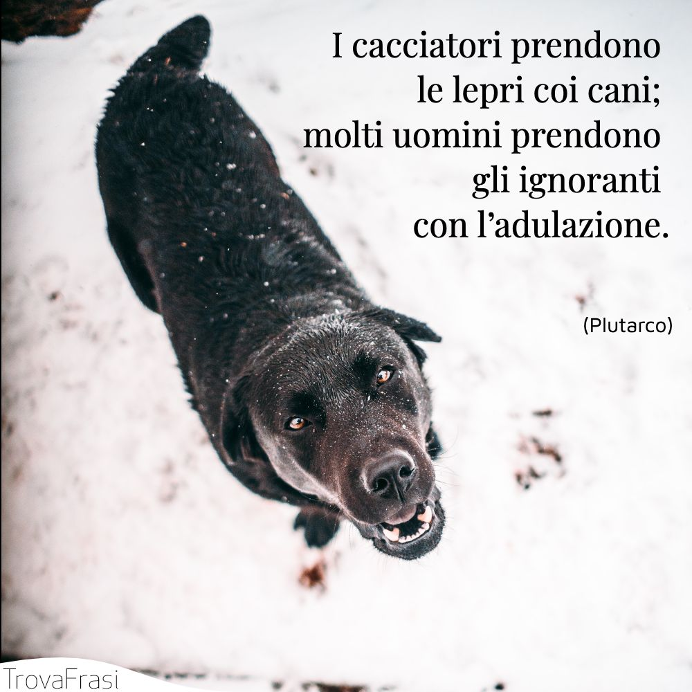 I cacciatori prendono le lepri coi cani; molti uomini prendono gli ignoranti con l'adulazione.