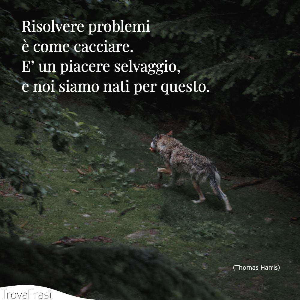 Risolvere problemi è come cacciare. E' un piacere selvaggio, e noi siamo nati per questo.