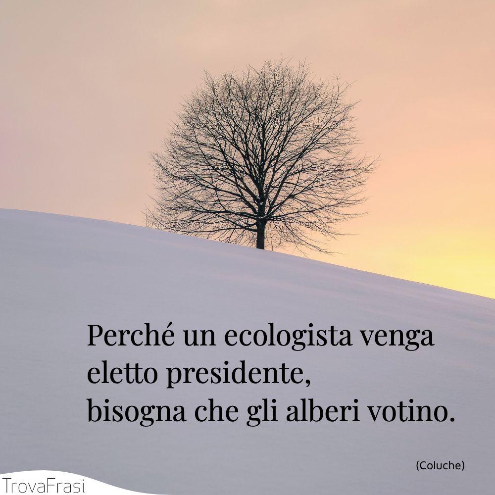 Perché un ecologista venga eletto presidente, bisogna che gli alberi votino.
