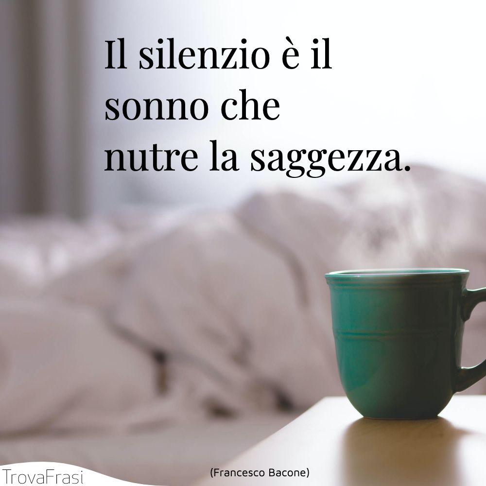 Il silenzio è il sonno che nutre la saggezza.