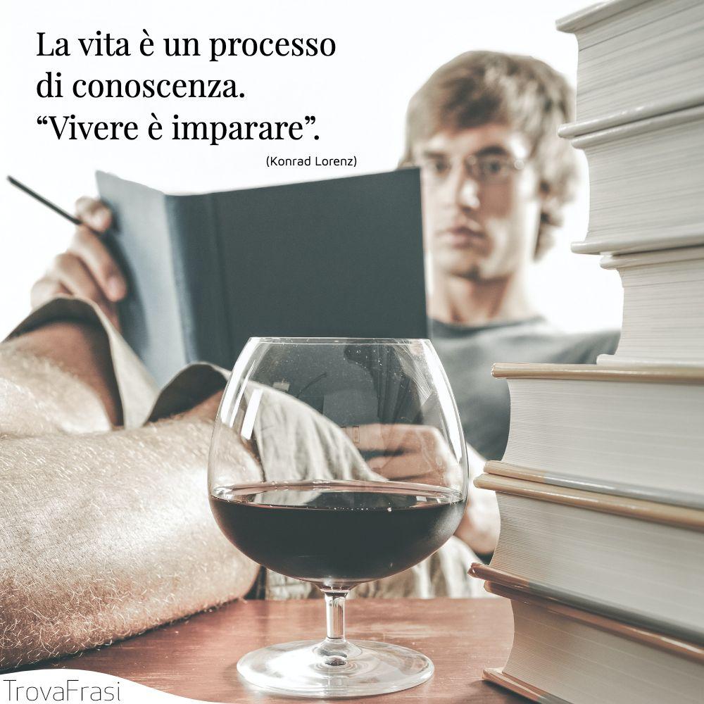 """La vita è un processo di conoscenza. """"Vivere è imparare""""."""
