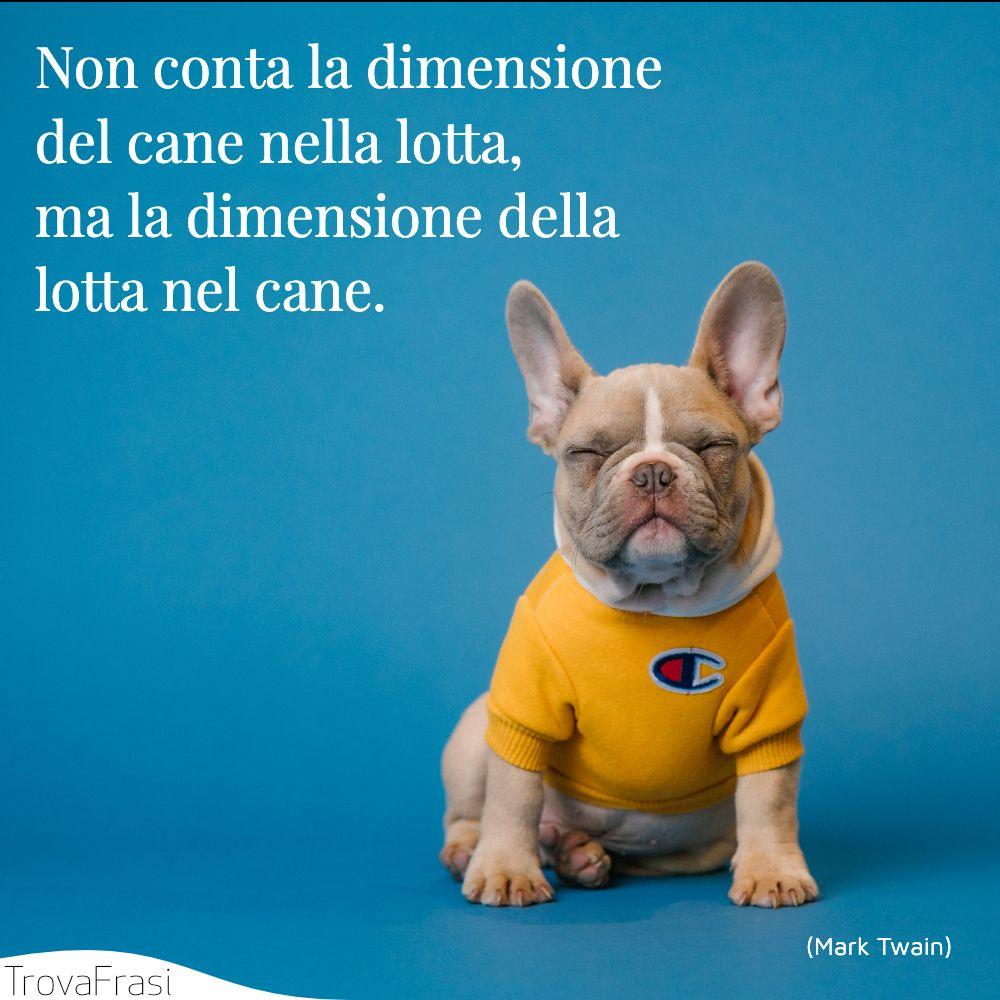 Non conta la dimensione del cane nella lotta, ma la dimensione della lotta nel cane.
