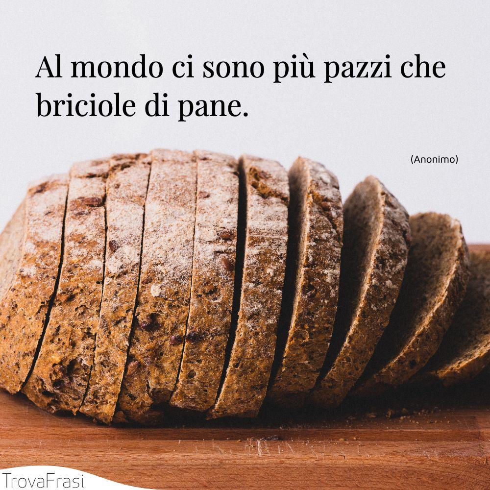 Al mondo ci sono più pazzi che briciole di pane.