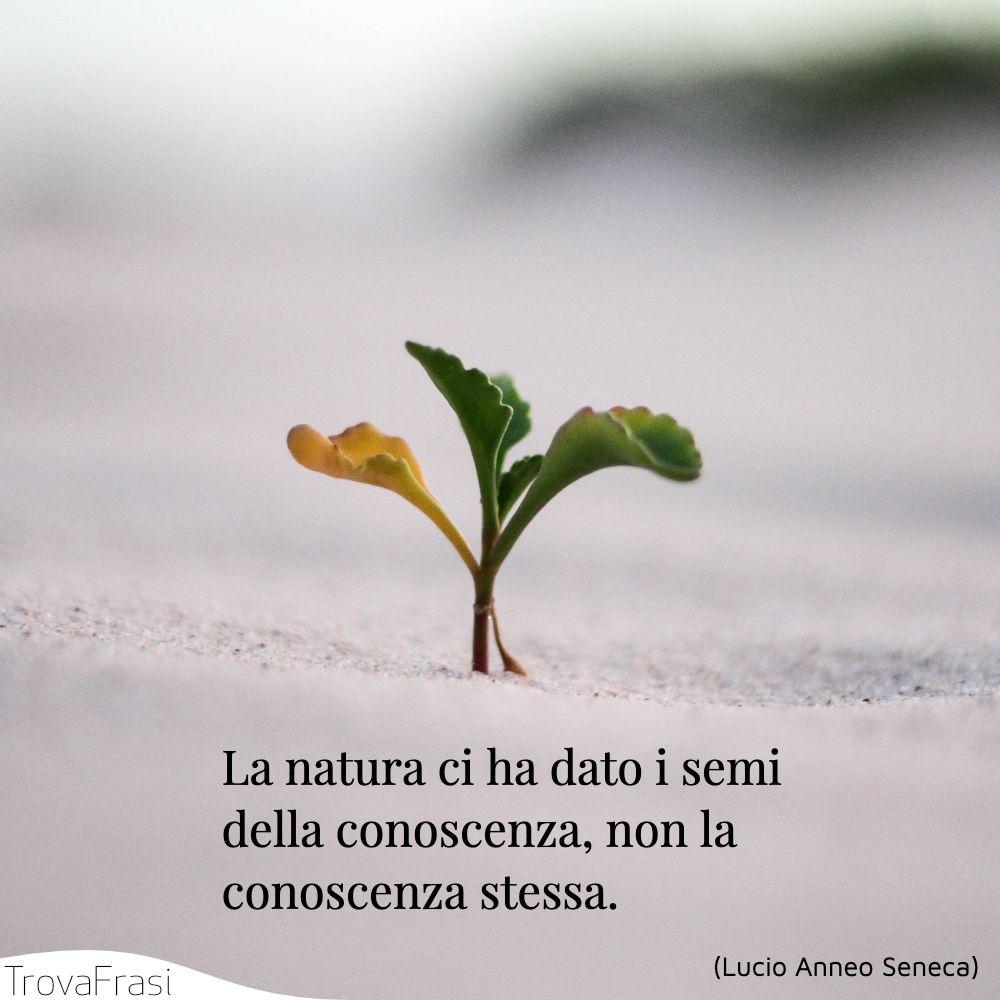La natura ci ha dato i semi della conoscenza, non la conoscenza stessa.