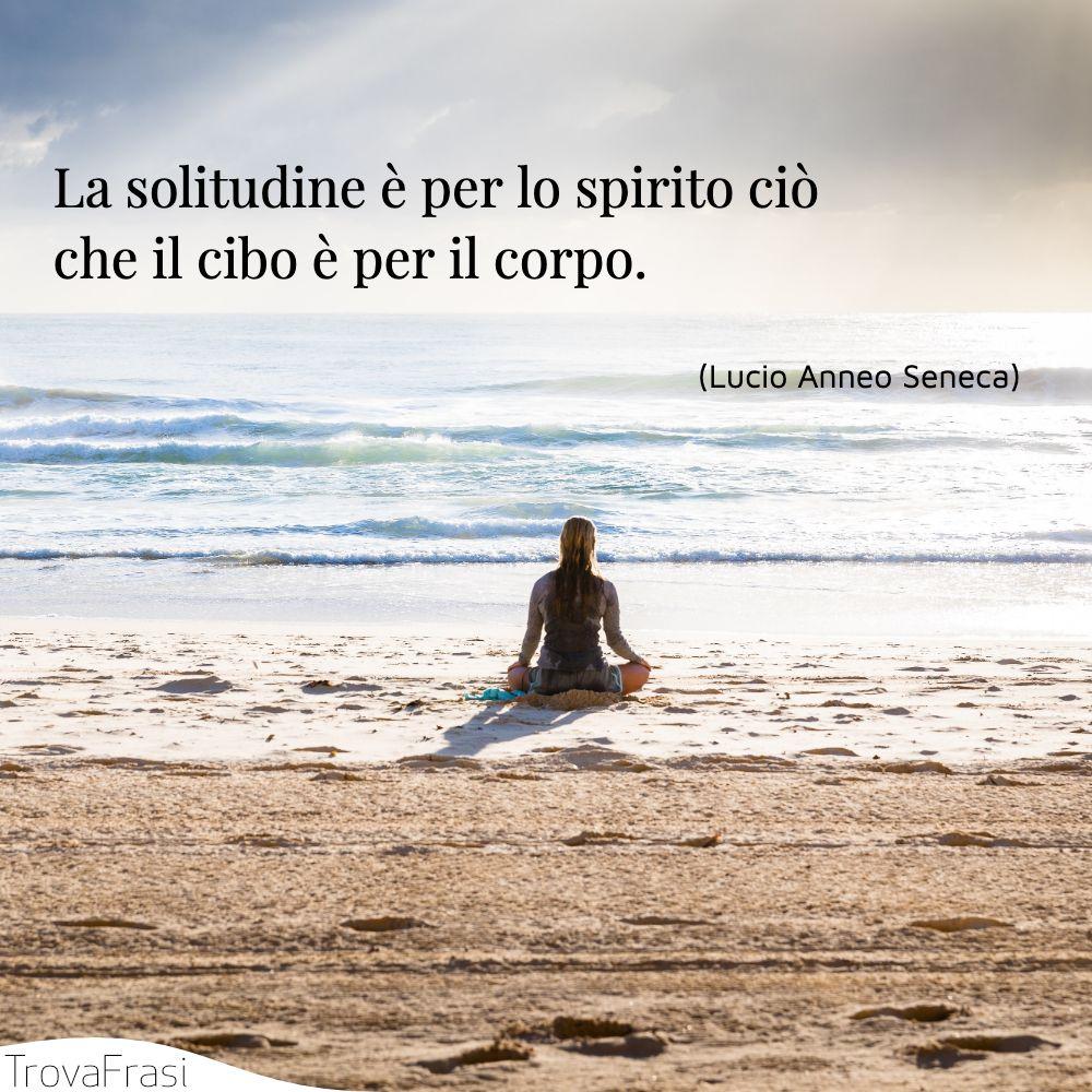 La solitudine è per lo spirito ciò che il cibo è per il corpo.