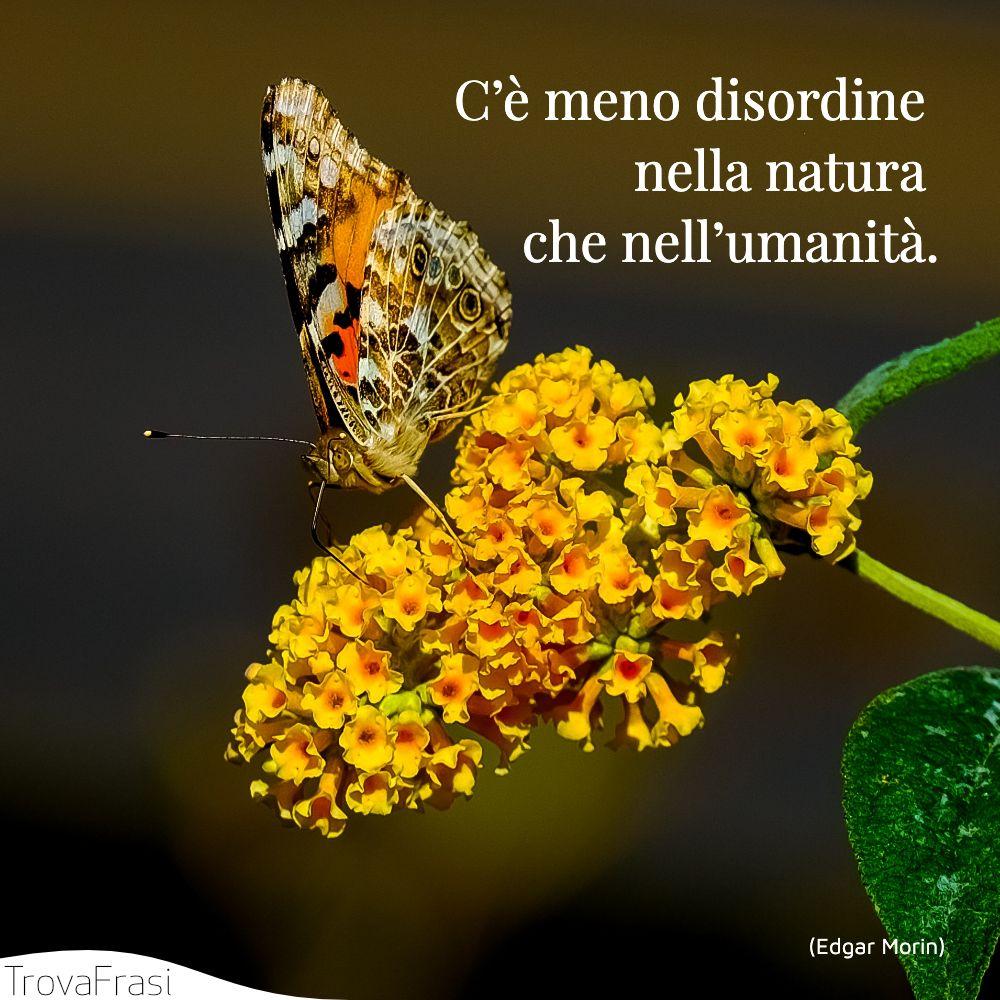 C'è meno disordine nella natura che nell'umanità.
