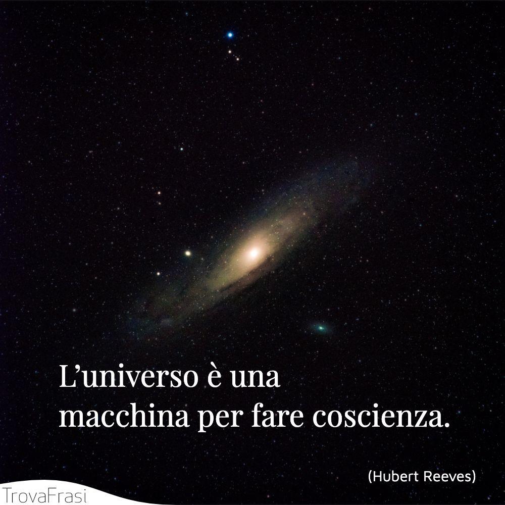 L'universo è una macchina per fare coscienza.