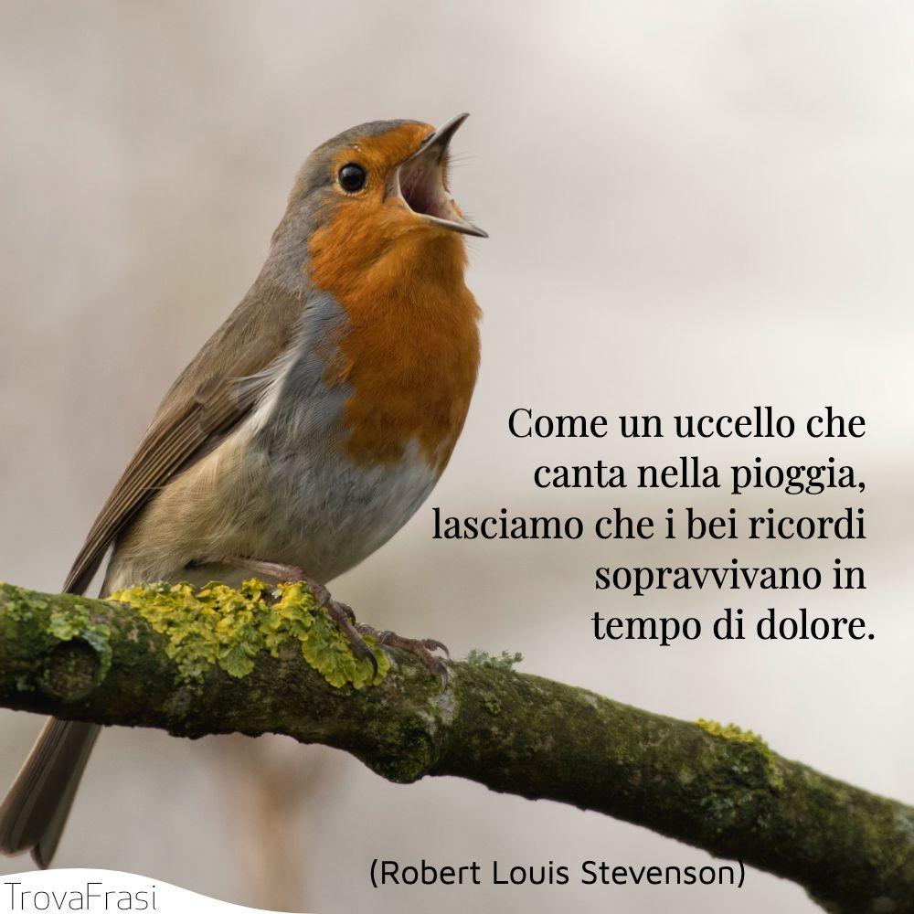 Come un uccello che canta nella pioggia, lasciamo che i bei ricordi sopravvivano in tempo di dolore.