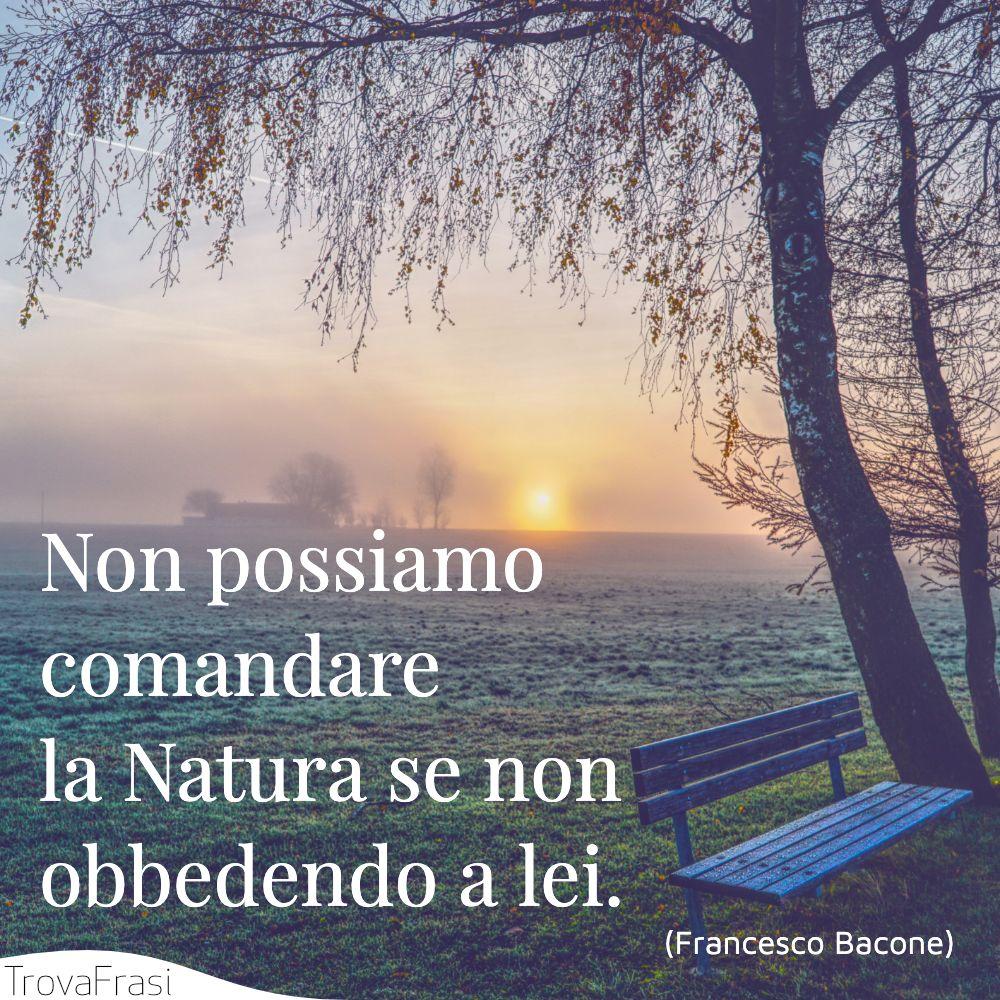 Non possiamo comandare la Natura se non obbedendo a lei.
