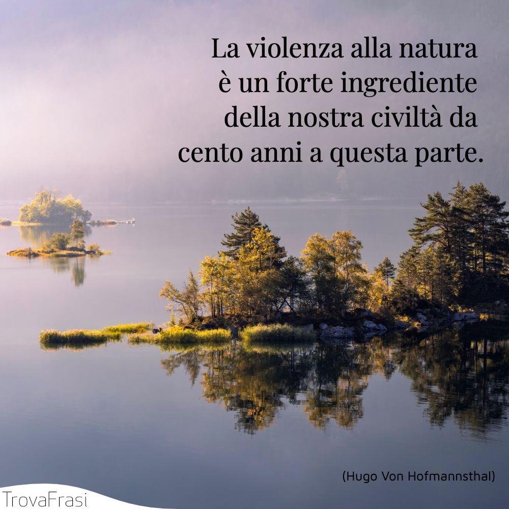 La violenza alla natura è un forte ingrediente della nostra civiltà da cento anni a questa parte.